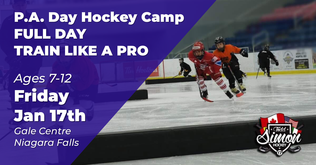 P.A. DAY CAMP - FRI. JAN. 17TH 2020